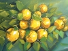 limon_toronja_120x80