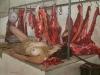 somos-carne_50-x-70-cm-jonathan-cadavid-marin